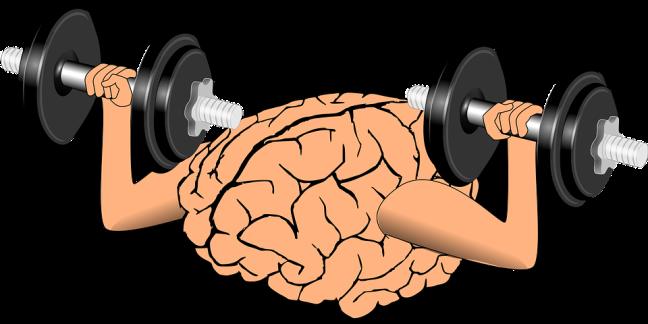 brain-1295128_960_720.png